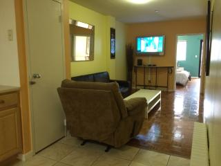 water view apt - Hudson Valley vacation rentals