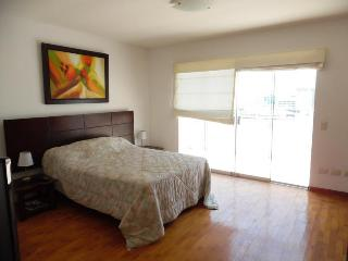 PENTHOUSE 3+ BED IN MIRAFLORES - Lima vacation rentals
