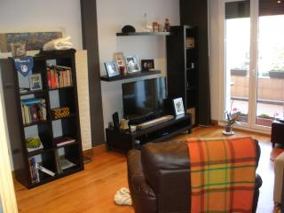 Apartment 5 pla 5 min beach WI FI - San Sebastian - Donostia vacation rentals