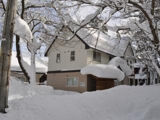 Hakuba Sumi Villa - Self Contained Accommodation - Hakuba-mura vacation rentals