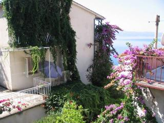 CR 110 - Apartment 1 - Omis vacation rentals
