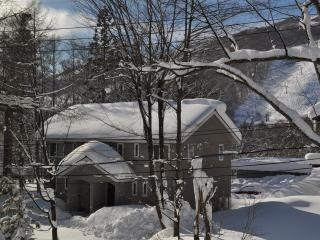 Cat's Villa Hakuba - Self Contained Ski Chalet - Hakuba-mura vacation rentals
