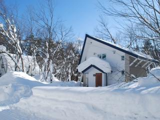 Beautiful Chalet with Internet Access and Outdoor Dining Area - Hakuba-mura vacation rentals