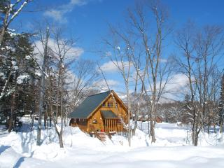 Cozy 3 bedroom Cabin in Hakuba-mura - Hakuba-mura vacation rentals