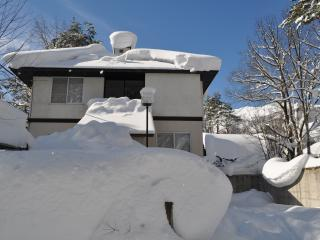 Yama House Hakuba - Self Contained Chalet - Hakuba-mura vacation rentals
