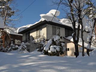 Yama House Hakuba - Self Contained Chalet - Hakuba-mura vacation rentals