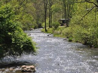 Paradise Valley Lodge - With Fishing Out the Back Door, This Creek Front Rental is Less than 15 minutes to Fontana Lake, Rafting, and Zip Line Canopy Tours - Bryson City vacation rentals