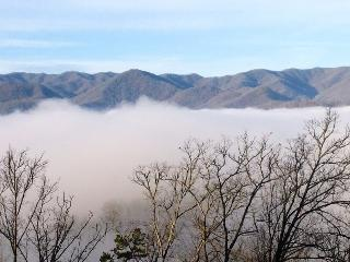 Shooting Star Ridge – Incredible View from a Gorgeous Cabin with Hot Tub, Fire Pit, and Wi-Fi -- Close to Rafting, the Casino, Fishing, Waterfalls, and the Tourist Train - Whittier vacation rentals