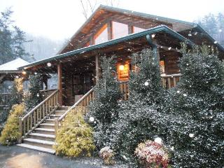 Native Winds Cabin - Romantic Log Cabin with a Fireplace in the Bedroom, Hot - Whittier vacation rentals