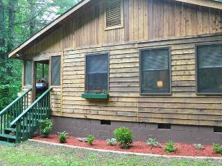 Dragonfly Cabin - Enjoy the Waterfall Off the Deck and Hike on 23 Private Acres - Bryson City vacation rentals