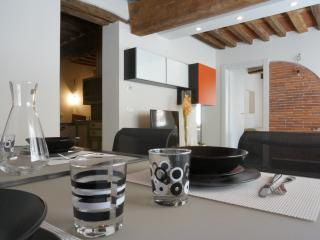 Veneto cozy apartment in the historical center - Lucca vacation rentals