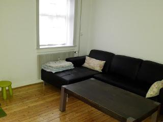 Charming Copenhagen apartment in beautiful surroundings - Copenhagen vacation rentals