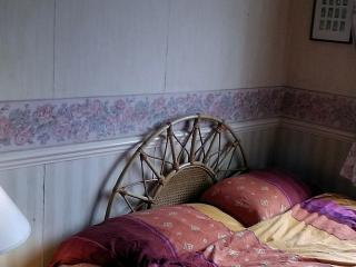 Guest rooms in picturesque  South London. - London vacation rentals