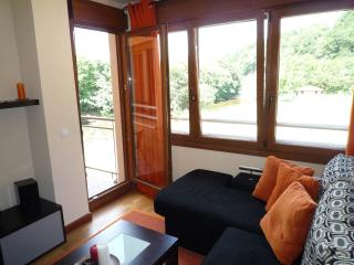 Romantic 1 bedroom Cangas de Onis Condo with Television - Cangas de Onis vacation rentals