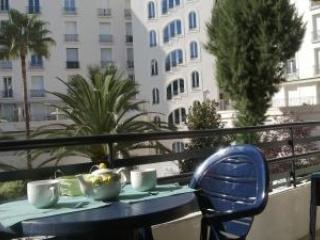 Red Rouaze Spacious 1 Bedroom Cannes Apartment with a Terrace - Cote d'Azur- French Riviera vacation rentals