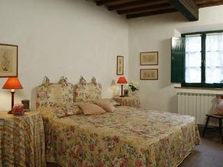 Cascinale - Certaldo vacation rentals