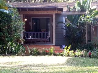 Gorgeous House with Internet Access and A/C - Orlando vacation rentals
