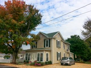 Garfield Guest House - Hawksbill Suite - Luray vacation rentals