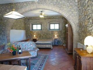 Gorgeous Condo with Internet Access and Shared Outdoor Pool - San Gimignano vacation rentals