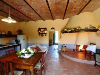 Lovely House with Dishwasher and Garden in Castiglione D'Orcia - Castiglione D'Orcia vacation rentals