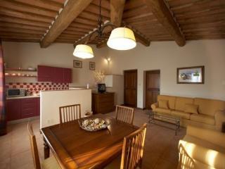 Tolly 7 - San Gimignano vacation rentals