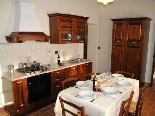 Lovely House with Internet Access and Parking - San Casciano dei Bagni vacation rentals