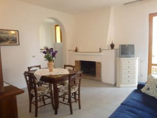 Bright House with Internet Access and Garden - Castellina In Chianti vacation rentals
