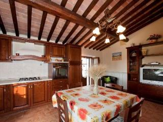 Colli L - San Gimignano vacation rentals