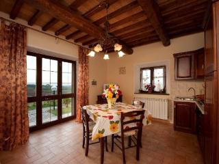 Colli RM - San Gimignano vacation rentals