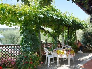 La Pergola - San Gimignano vacation rentals