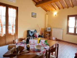 Perfect 1 bedroom House in Terricciola - Terricciola vacation rentals