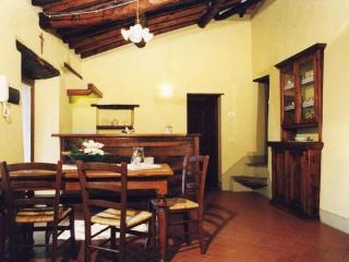 2 bedroom House with Garden in Castiglion Fiorentino - Castiglion Fiorentino vacation rentals