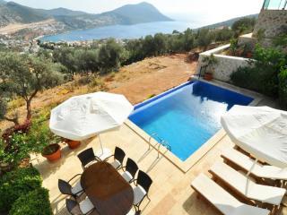 Villa Harika (Ortaalan - Kalkan) - Kalkan vacation rentals