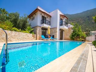 Villa Lemon Tree (Ortaalan - Kalkan) - Kalkan vacation rentals