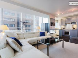 Modern panoramic 1 bed apartment, Grosvenor Road, Westminster - London vacation rentals