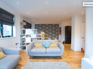 Modern 2 bed 2 bath on Southgate Road, Dalston - London vacation rentals