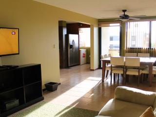Cedro Premium Vacation Condo - San Jose vacation rentals