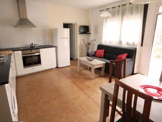 Rural apartment - Torroella de Montgri vacation rentals