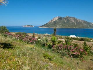 AMORGOS Agios Pavlos Studios APHRODITE - Aegiali vacation rentals