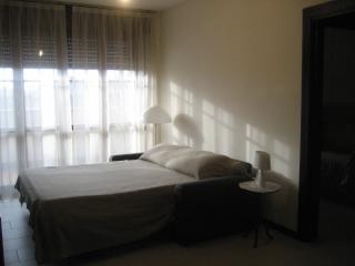 Appartamento senza uso di cucina - Melegnano vacation rentals