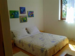 Comfortable 1 bedroom Condo in Labin - Labin vacation rentals