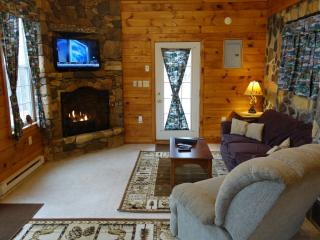 High Ridge cabin in the Blue Ridge mountains - Luray vacation rentals
