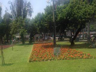 New and Great Location in Miraflores - Miraflores vacation rentals