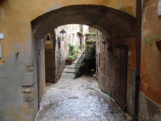 caratteristica casa nel borgo di Capalbio - Capalbio vacation rentals