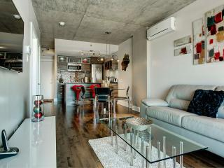 Cozy 1 bedroom Apartment in Montreal - Montreal vacation rentals
