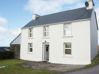 Wonderful House with Internet Access and Satellite Or Cable TV - Ballydavid vacation rentals