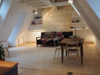 charme historique et contemporain au centre ville - Tours vacation rentals