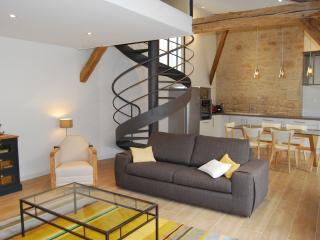 Nice Gite with Internet Access and Cleaning Service - Châlons-en-Champagne vacation rentals