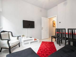 Newly Renovated Duplex in Best Area - Istanbul Province vacation rentals
