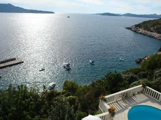 Amazing seaview villa Bird of paradize - Trsteno vacation rentals